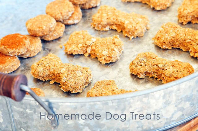 Homemade Dog Treats Recipe from addapinch.com