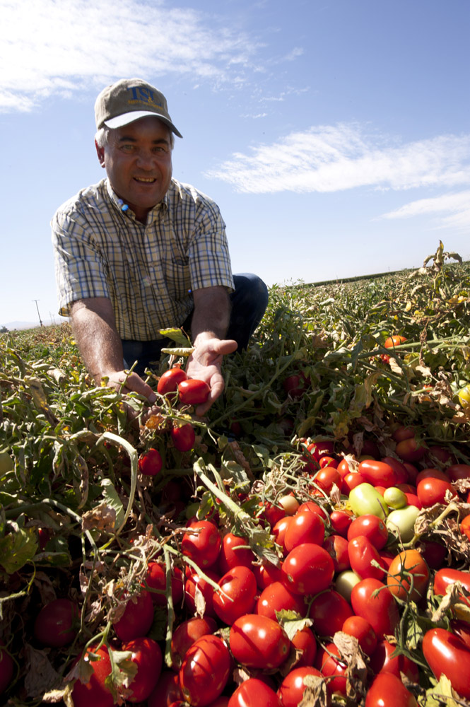 Del Monte Harvest | ©addapinch.com