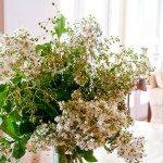 5 Minute Floral Arrangement :: Crepe Myrtles