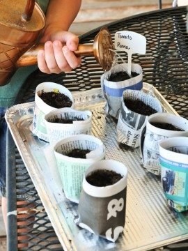 How to Make Your Own Seedling Pots