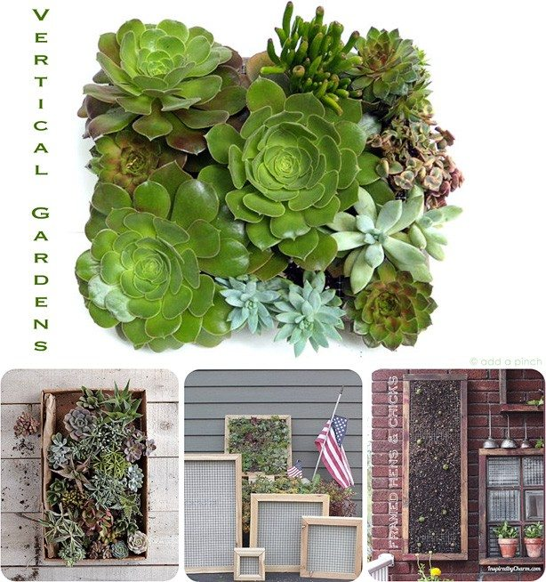 Vertical Gardens from addapinch.com