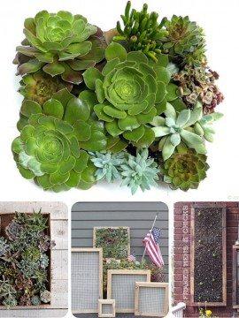 Vertical Succulent Gardens {Mingle Monday 6/25}