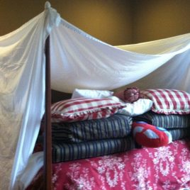 Rainy Day Fort Building