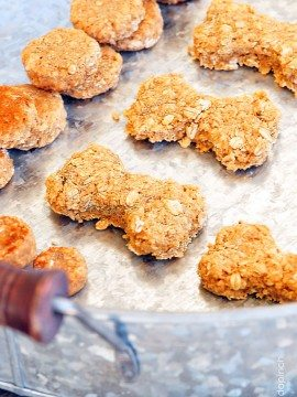 Homemade Dog Treats Recipe