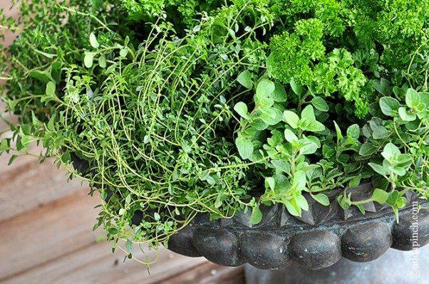 Porch Herb Garden | ©addapinch.com