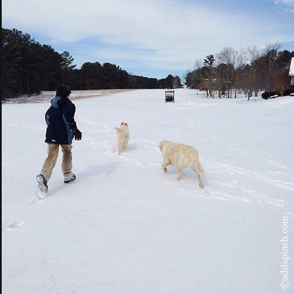 Snow Day | ©addapinch.com