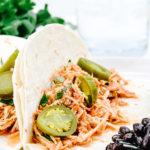 Shredded Salsa Chicken Recipe