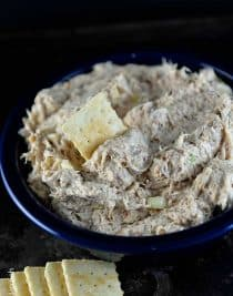 The Best Chicken Dip Recipe from addapinch.com