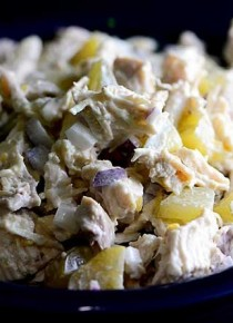 chicken-salad-with-pickles-recipe-DSC_5393-670x445