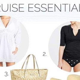Cruise Essentials from addapinch.com