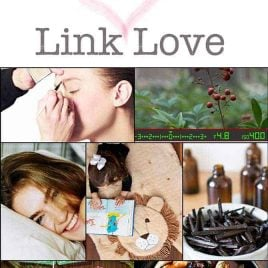 Link Love 01 from addapinch.com