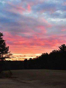 January Sunsets