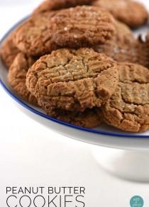 rp_flourless-peanut-butter-cookies-recipe-text-DSC_09401.jpg