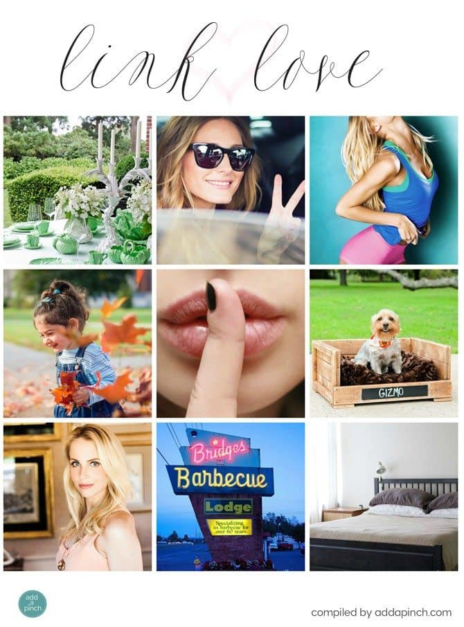 Link Love April 4, 2015 from addapinch.com