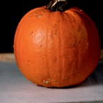 rp_pumpkin-puree-recipe_DSC26711.jpg