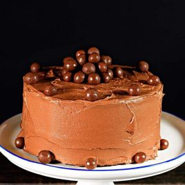 "This Malted Chocolate Cake makes a ""whopper"" chocolate cake recipe perfect for celebrating all sort of occasions - or just because! // addapinch.com"