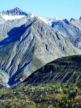 Alaska Cruise: Top 10 Travel Essentials