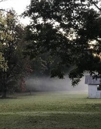 Foggy Farm // addapinch.com