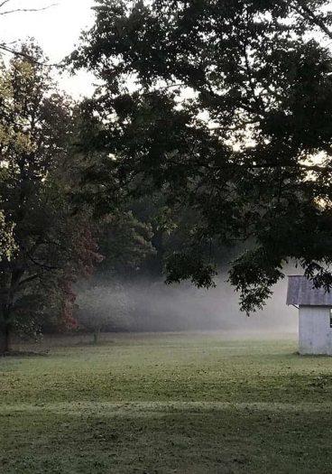 Foggy Farm // addapinch.com