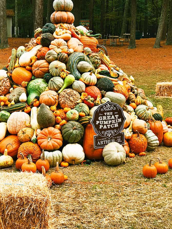 Country Living Fair - 1 // addapinch.com