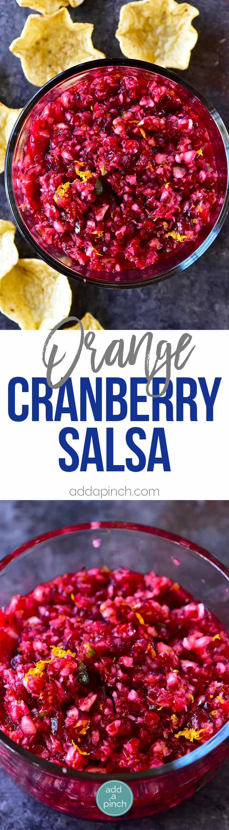 Orange Cranberry Salsa Recipe - Fresh cranberry salsa is a sweet fruit salsa recipe that adds color, flavor and wow to any dish! Perfect throughout the holidays! // addapinch.com