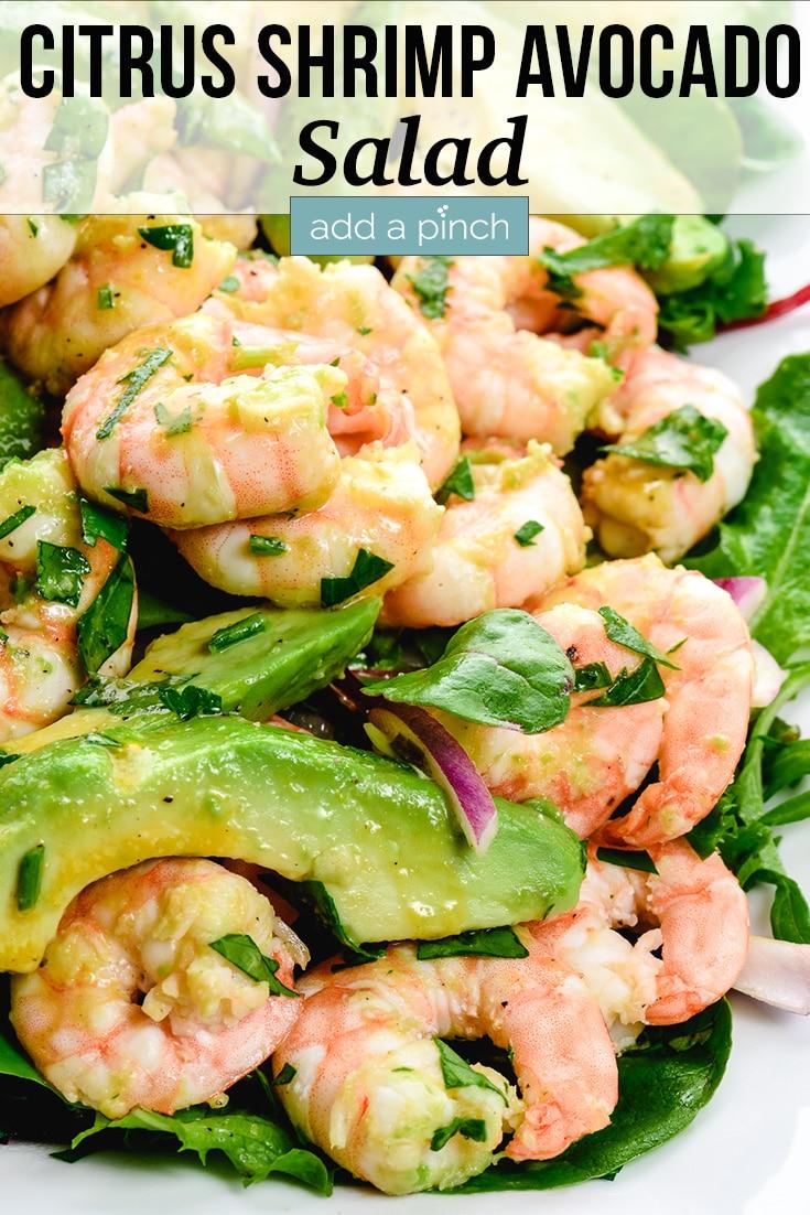 Citrus Shrimp Avocado Salad served on white plate - with text - addapinch.com